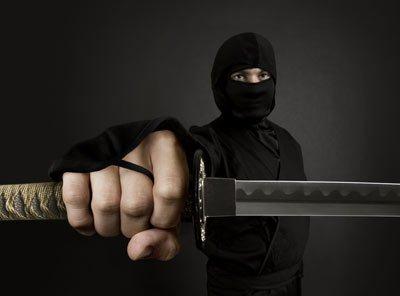 about ninjas